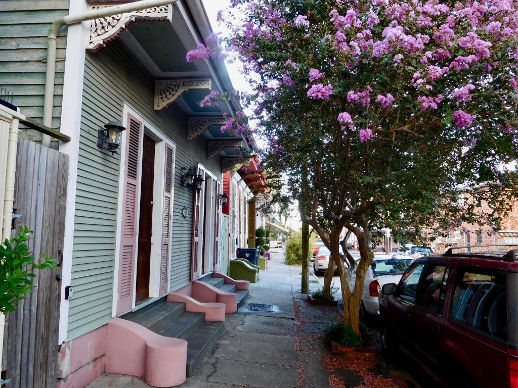cute street in NOLA