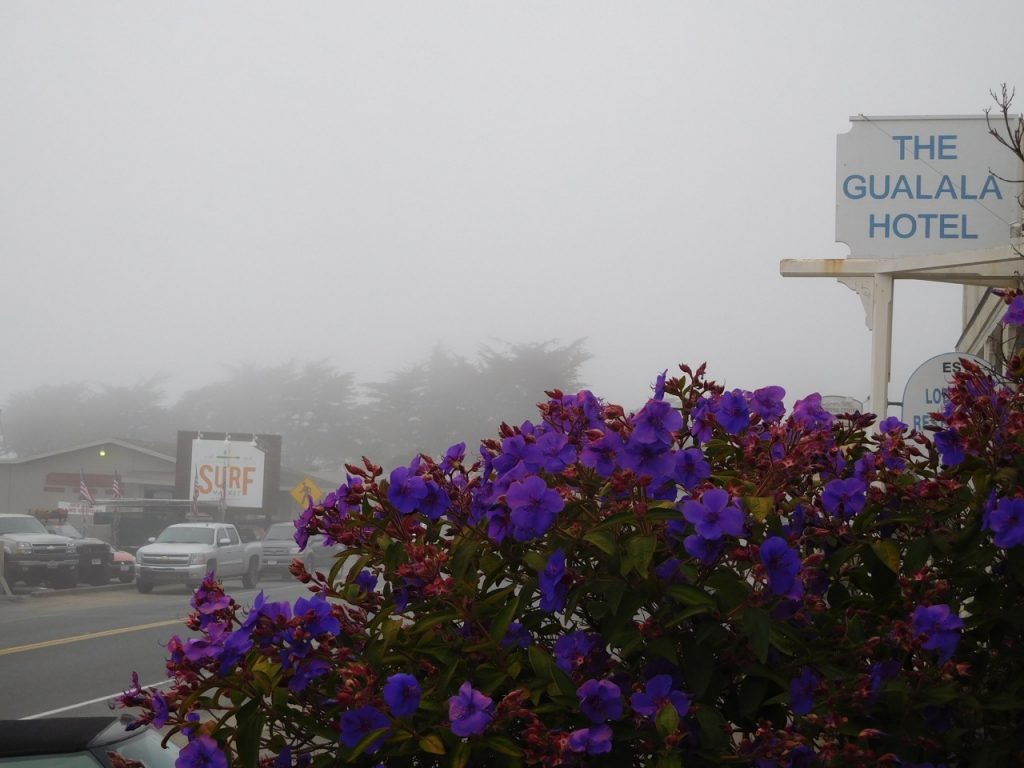 Gualala on our California Road trip