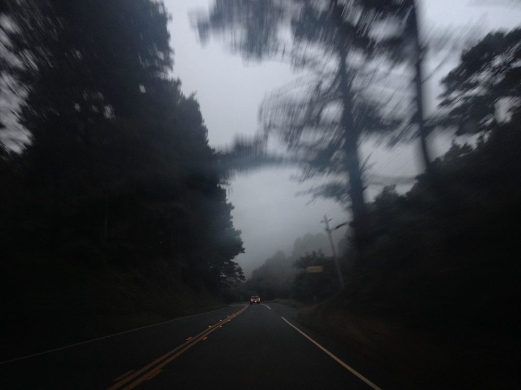 Dark and misty Northern California