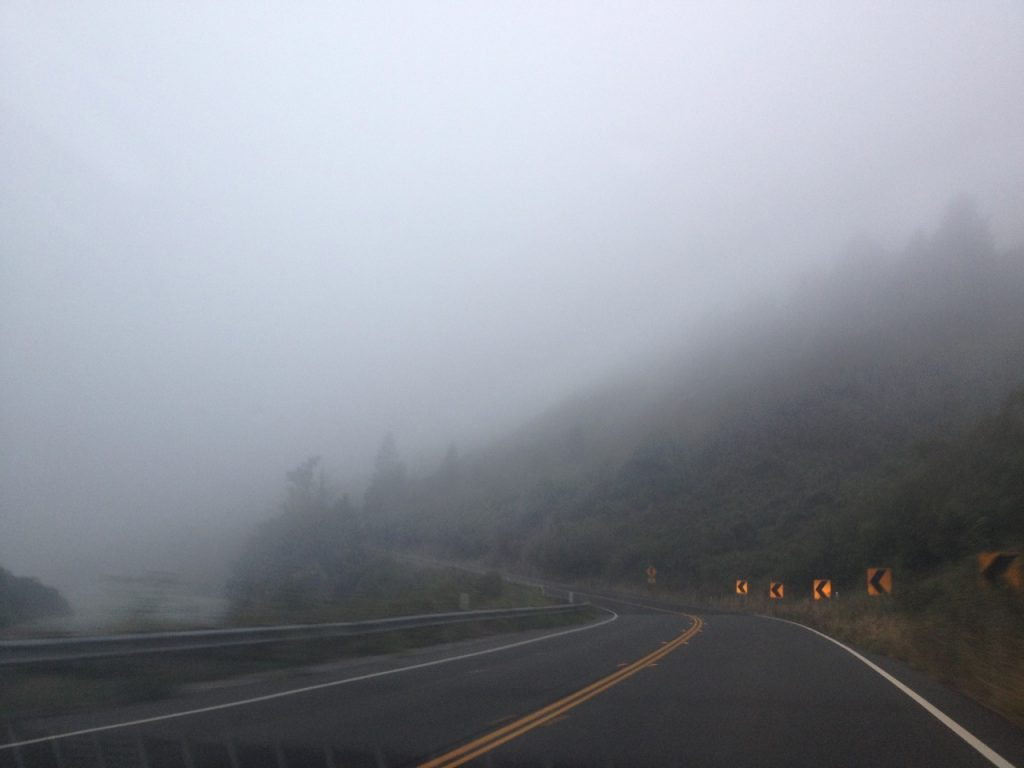 A roadtrip in Northern California involves a lot of mist