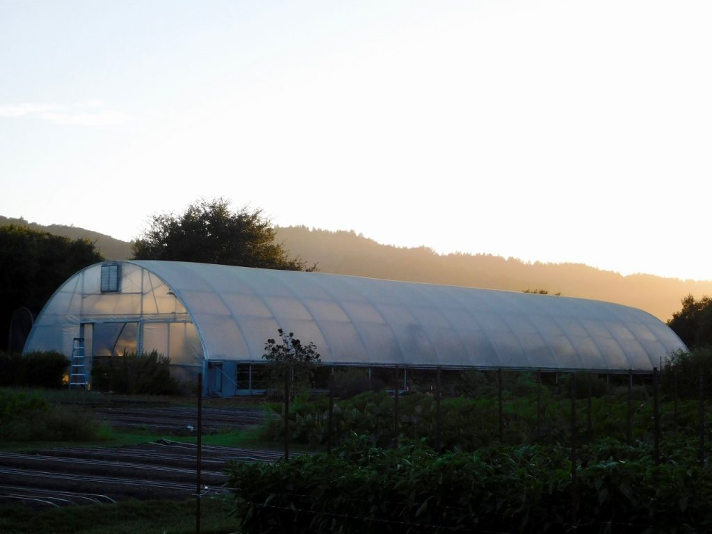 Glasshouse in Yountville