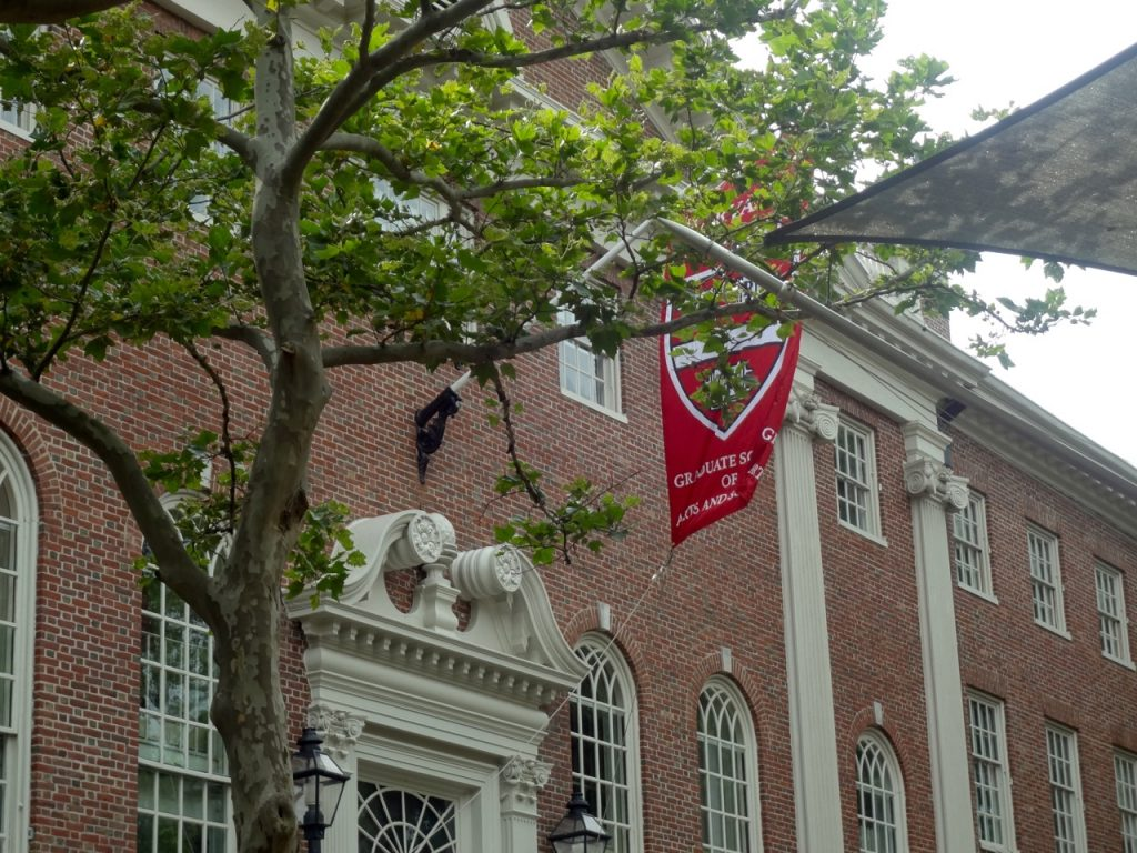 Harvard School of Graduate in Arts (2)