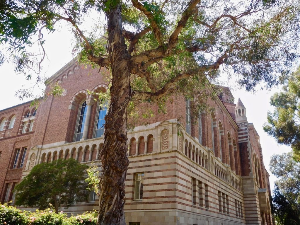 One of the buildings of UCLA