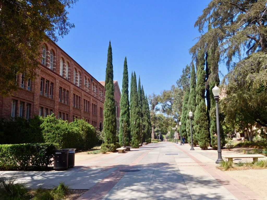 Alley in UCLA