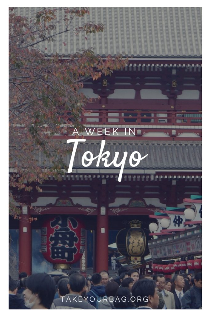 A week in Tokyo | Guide to Tokyo | What to see in a week in Tokyo | Traditional places Tokyo | The best of Tokyo ! | #tokyo #tokyoinwinter #harajuku #shinjuku #shibuya #asakusa