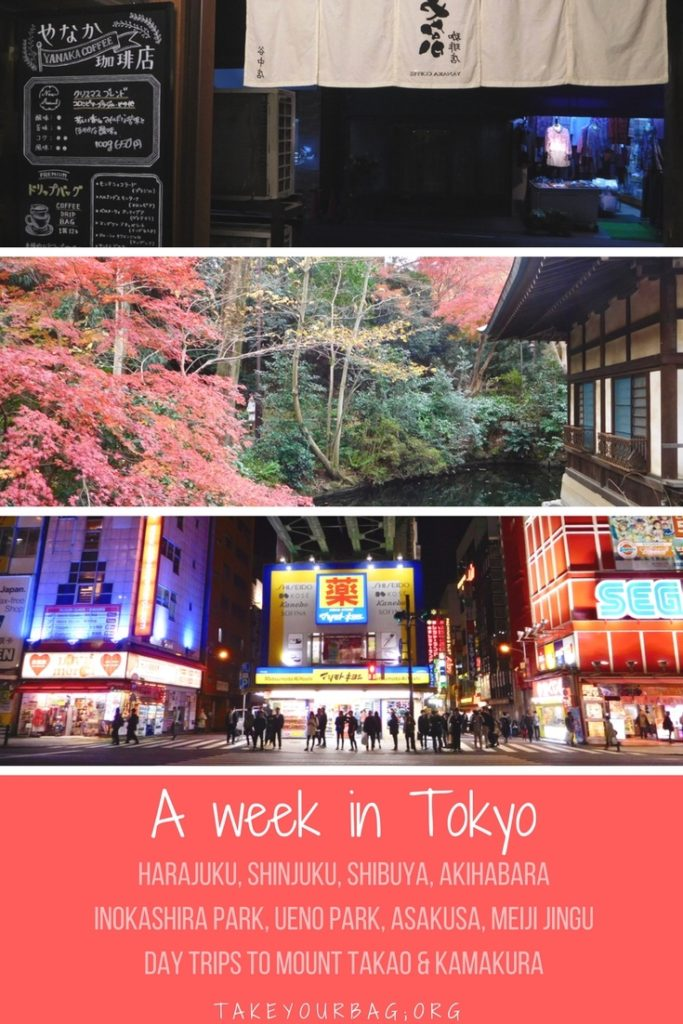 First-timers Guide to Tokyo | Must-see places in Tokyo | Parks in Tokyo | #tokyo #weekintokyo #inokashira #uenopark #takaosan #kamakura