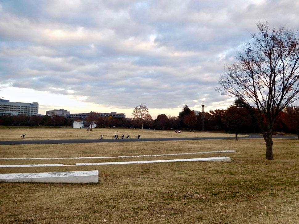 Showa Memorial Park in Tokyo