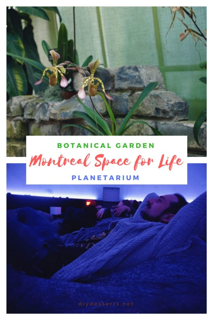 For kids and adults alike, the Space for Life is a great place to visit in Montreal! Check out the gorgeous flowers and plants at the Botanical Garden and discover space at the Montreal Planetarium