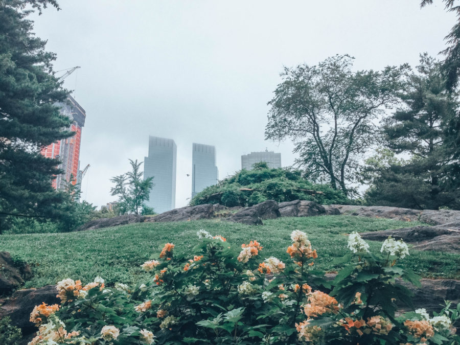 Off the beaten path things to do in NYC Central Park Checking the flowers with buildings in the background