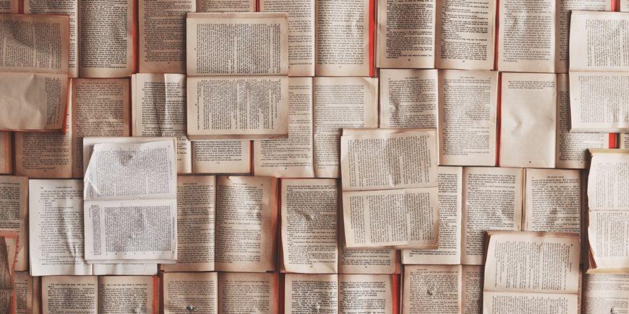 livres ouverts, chroniques de voyage