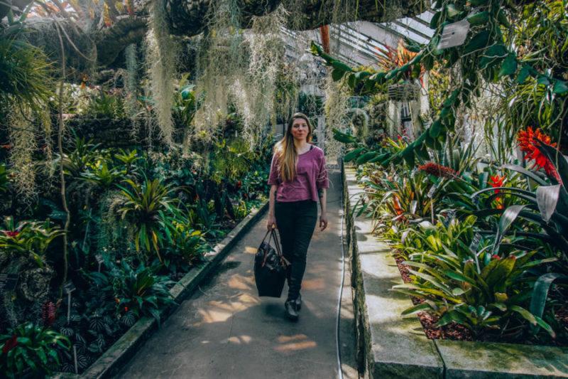 Alice in the Botanical Gardens