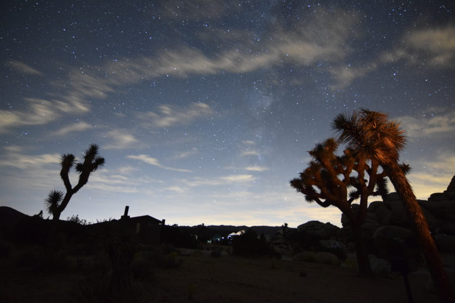The night sky at Joshua Tree National Park, a great stop on a California road trip!