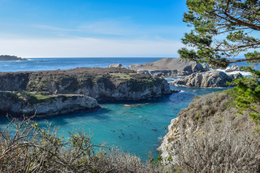 Monterey stop on our California Road Trip Itinerary