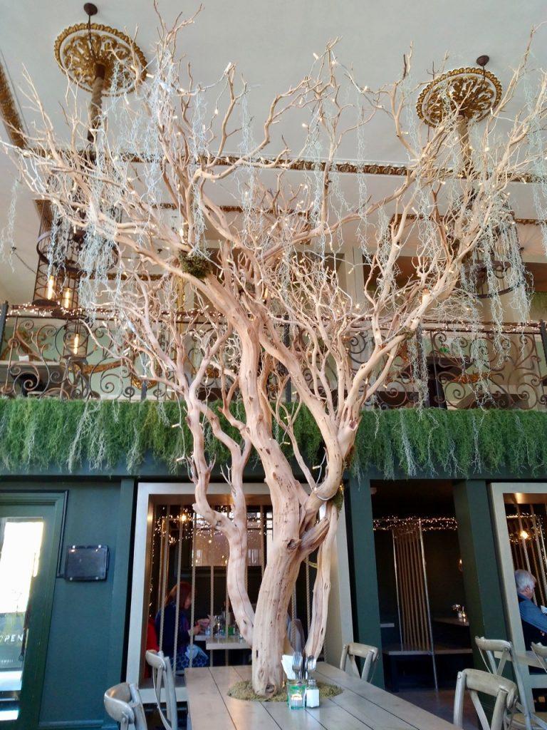 Tree decor at Mowgli liverpool