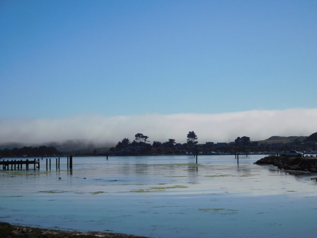 Waterside at Bodega Bay