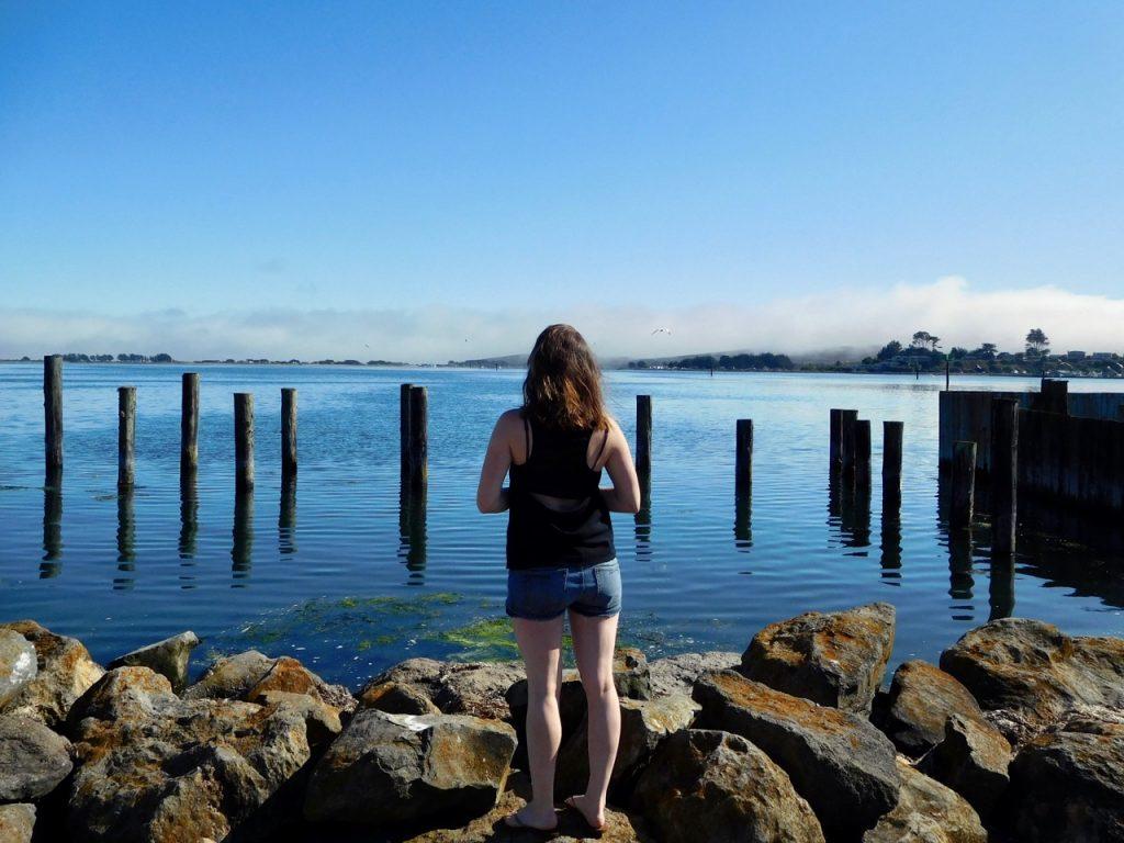 Alice in Bodega Bay