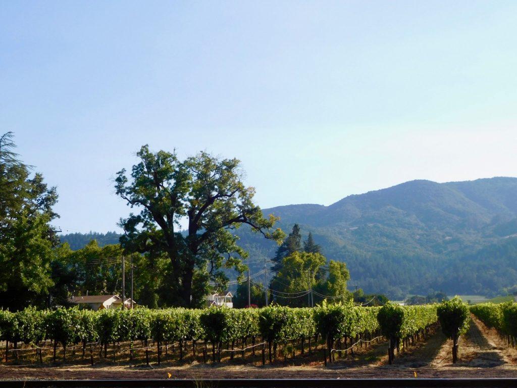 Leaving Napa Valley