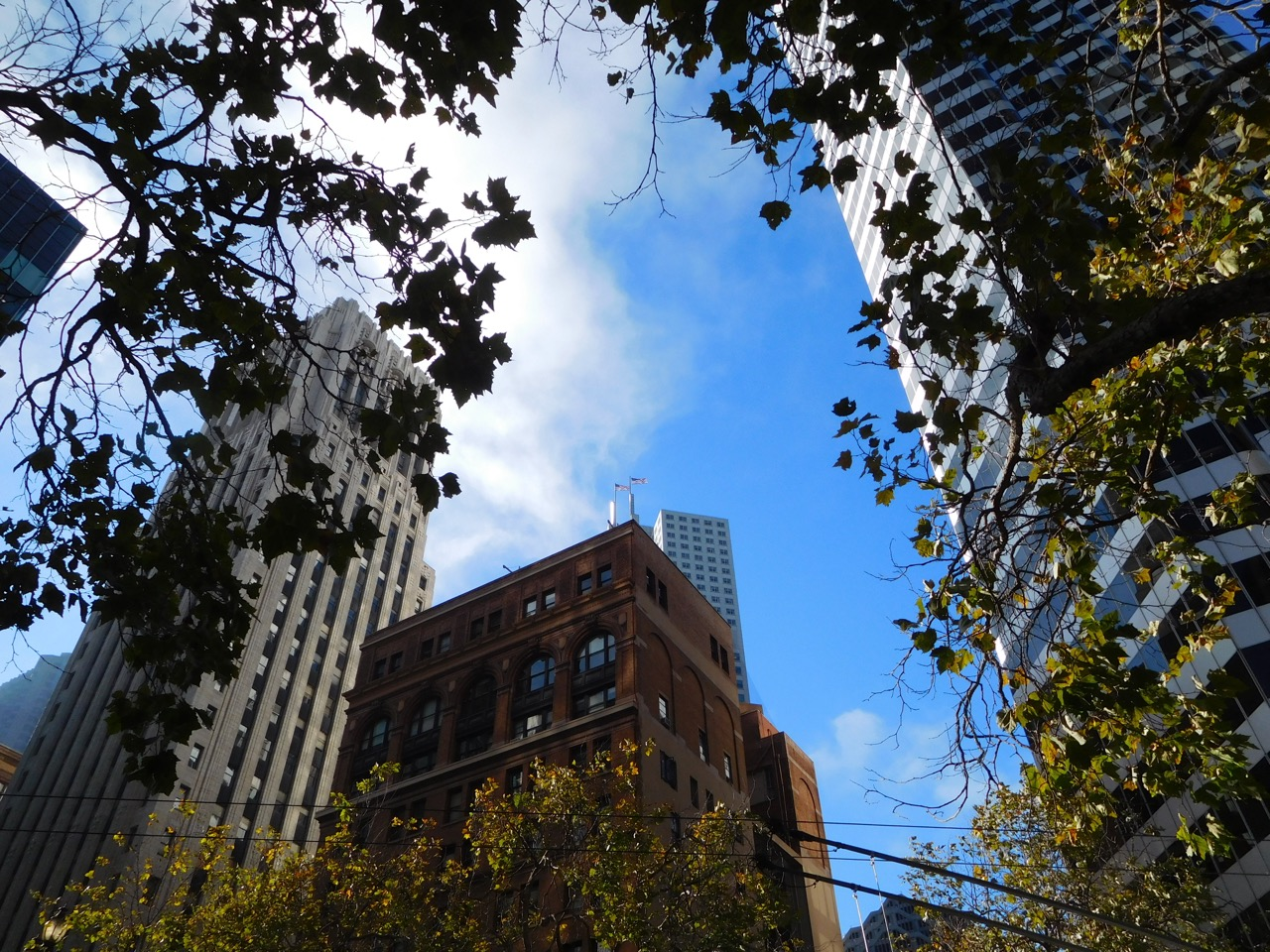 San Francisco Photo Journal - a day in SF (3)