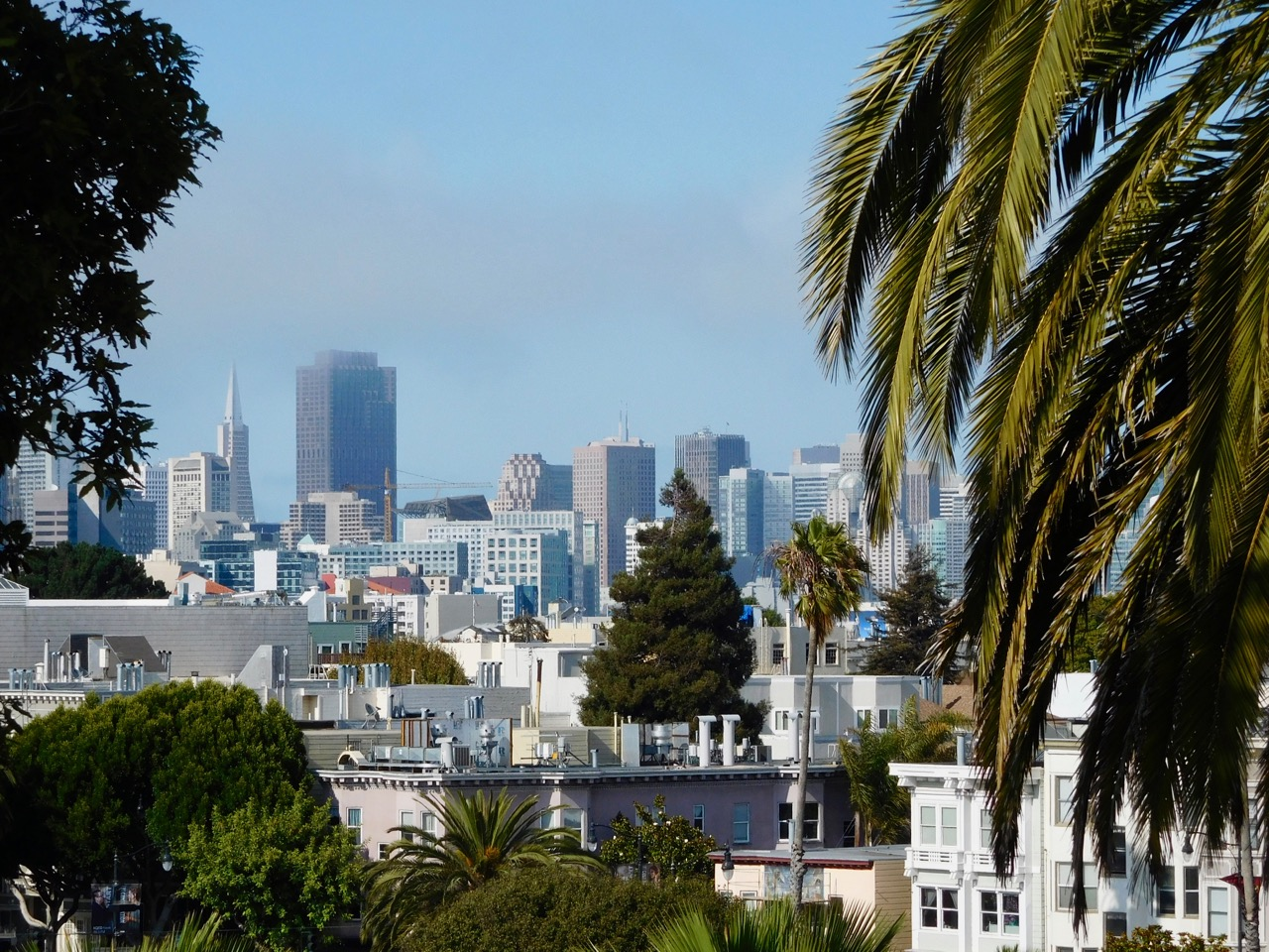 San Francisco Photo Journal - a day in SF (24)