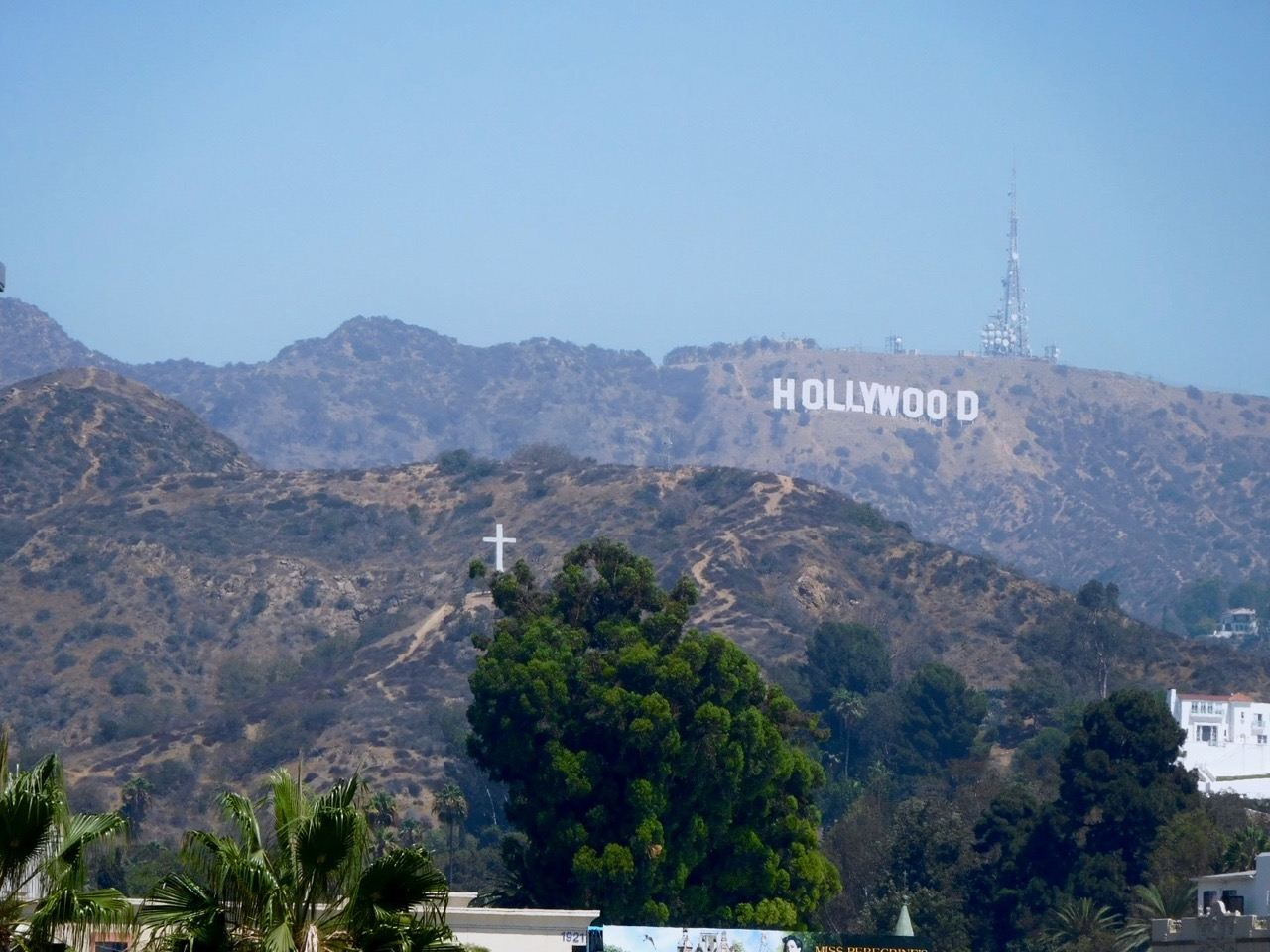 3 Days in Los Angeles - Hollywood Hills (1)