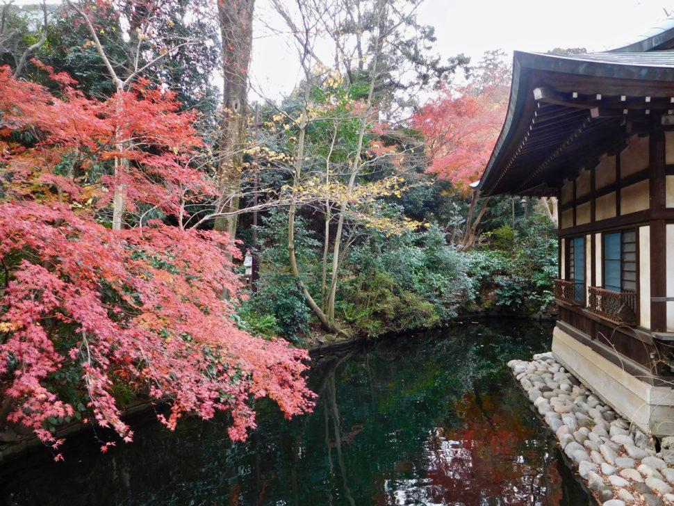 Inokashira Park in Autumn in Tokyo