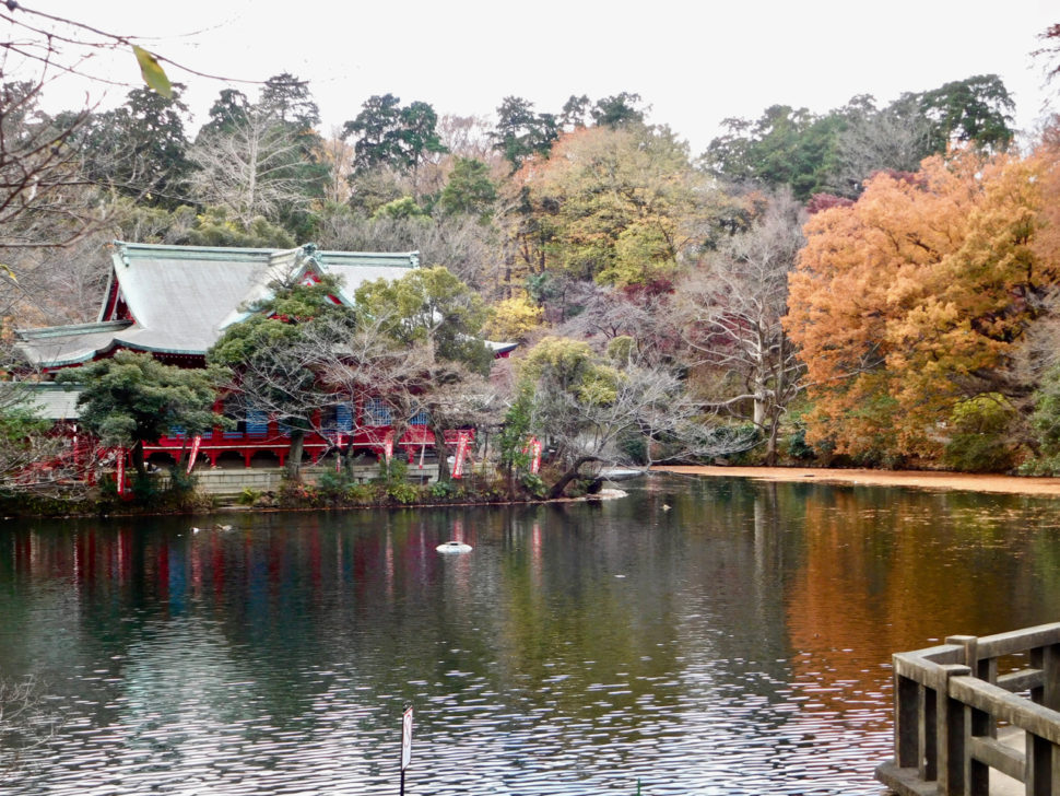 Beautiful calm view across the pond in Inokashira Park in Trokyo