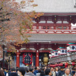 A Week in Tokyo Express Guide