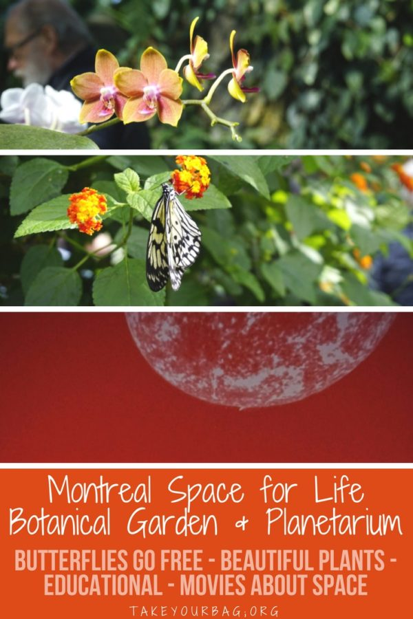 The Space for Life is an amazing educational place in Montreal to learn about plants and flowers at the Botanical Garden, and Space at the Planetarium