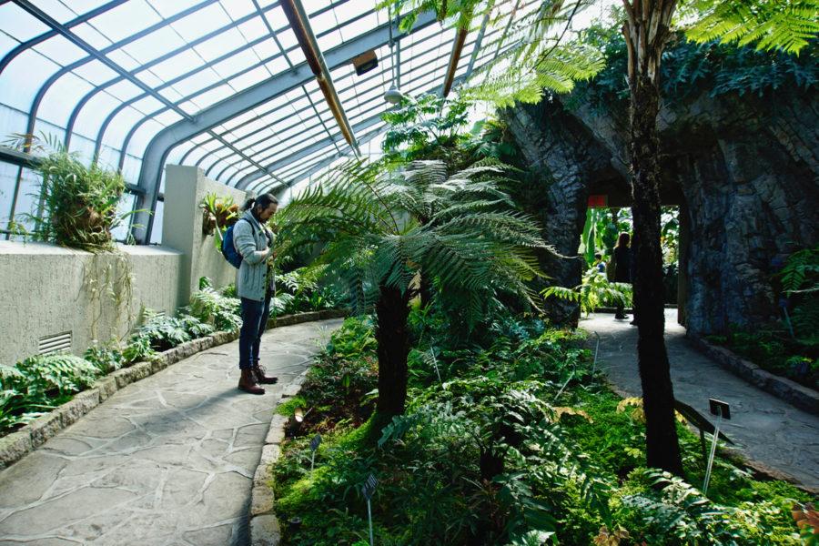 Simone at the Montreal Botanical Garden