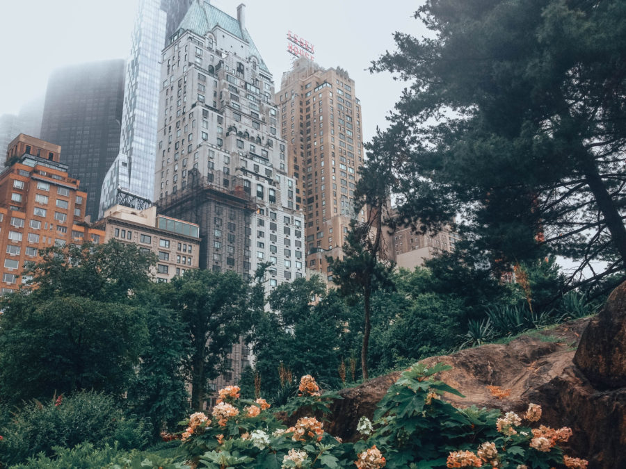 Off the beaten path things to do in NYC Central Park in the middle of the buildings