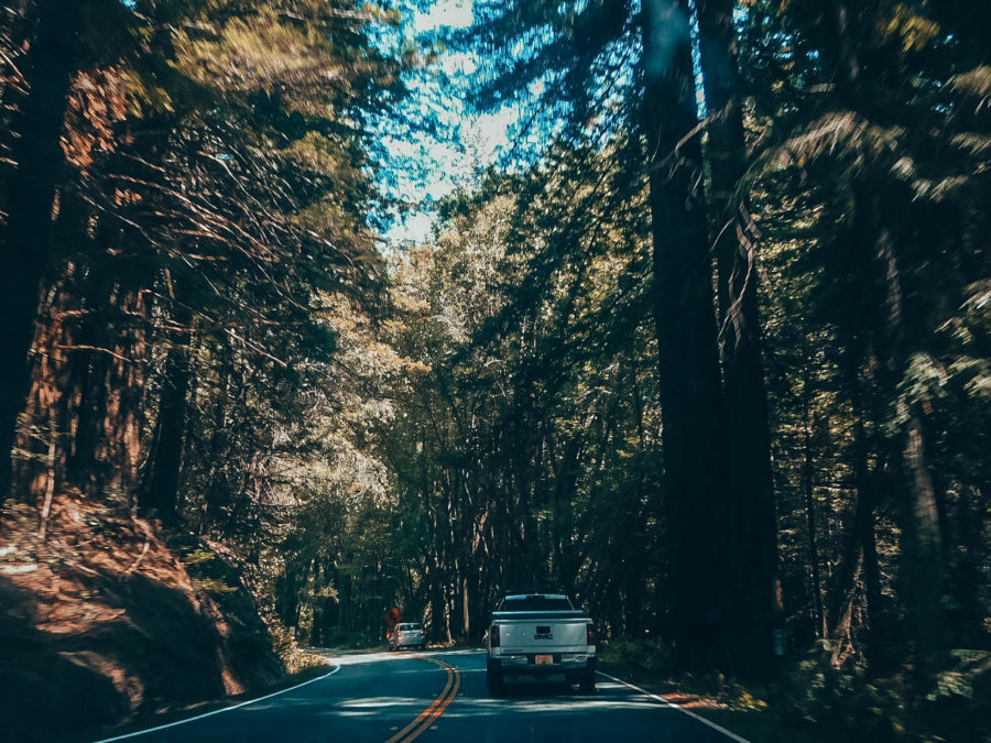 Itinerary USA road trip by bus - End of our road trip in Northern California