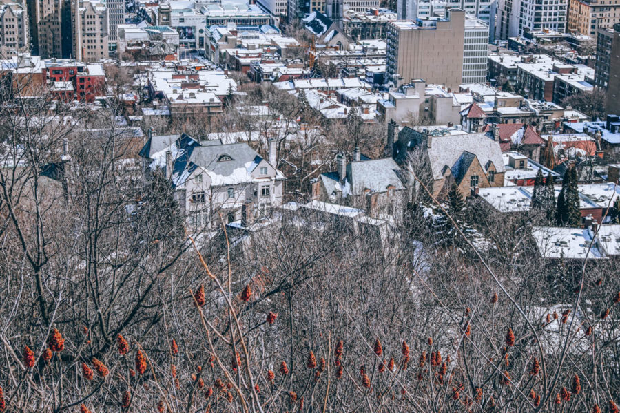 Another closer view from the belvedere of Mount Royal in Montreal in March