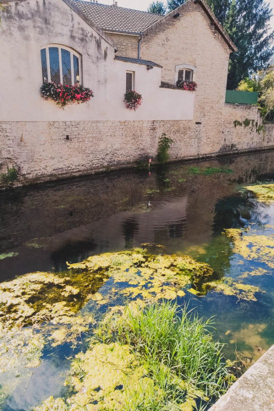 Cute pond next to where we parked our van in Beaune Burgundy France