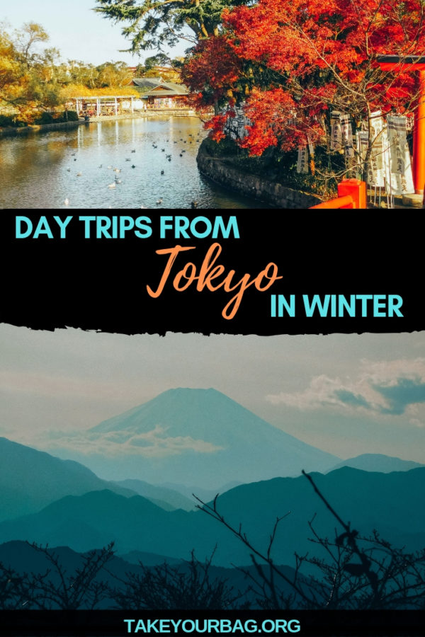 Day trip from Tokyo in winter | beautiful views of Tokyo in winter | View of Mount Fuji | Hiking in Tokyo | traditional Japanese gardens in Kamakura